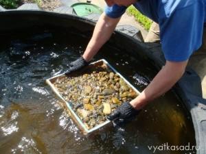 промывание гальки из пруда