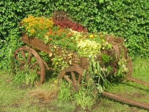 цветы в телеге