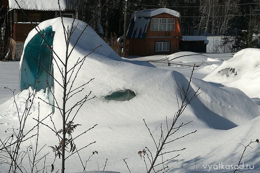 сломанная снегом теплица